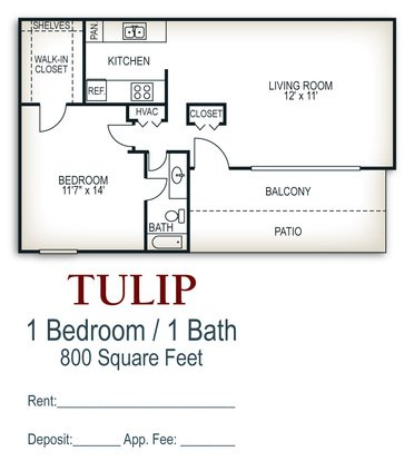 1 Bedroom 1 Bathroom Apartment for rent at Walker Springs in Knoxville, TN
