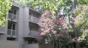 Poplar Pines Apartment for rent in Memphis, TN