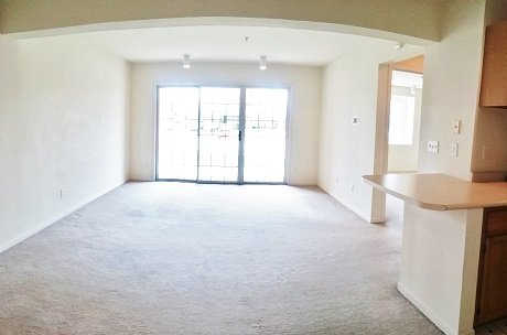 1 Bedroom 1 Bathroom Apartment for rent at Park Place in Champaign, IL