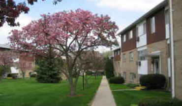 3031 S. Washington Apartment for rent in Lansing, MI