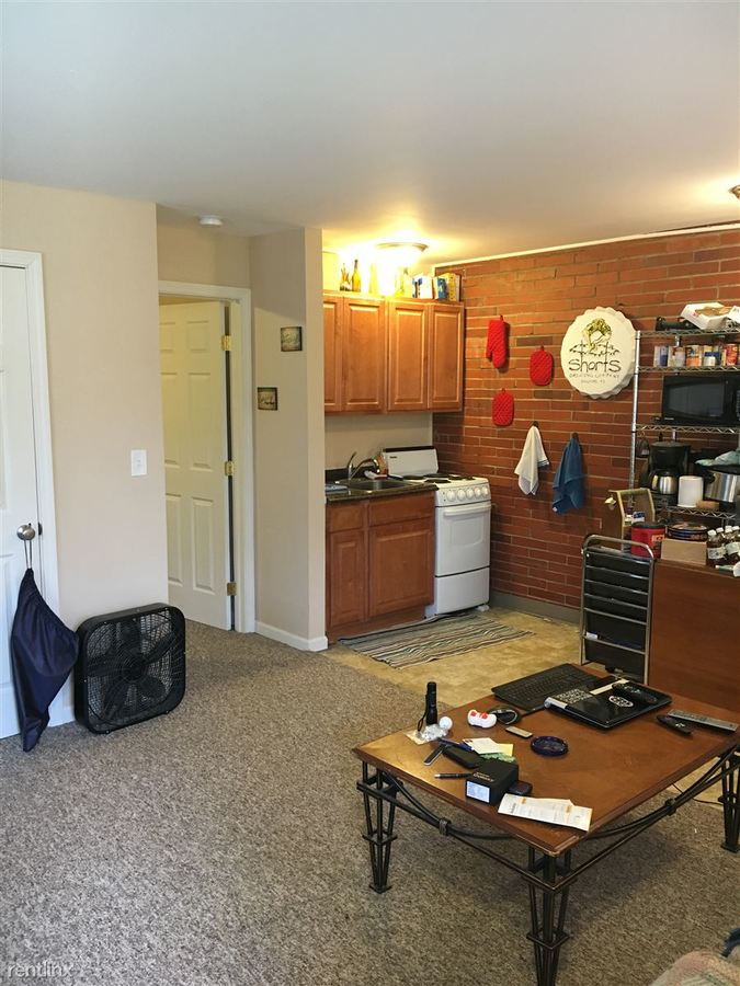 1 Bedroom 1 Bathroom Apartment for rent at 1019 Arbordale in Ann Arbor, MI