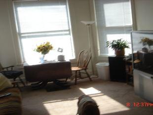 3 Bedrooms 1 Bathroom Apartment for rent at 301 N. Washington in Ypsilanti, MI