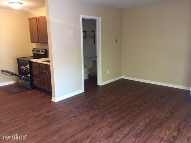 Studio 1 Bathroom Apartment for rent at 551 S 4th Ave in Ann Arbor, MI
