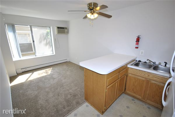 1 Bedroom 1 Bathroom Apartment for rent at 527 S 4th Ave in Ann Arbor, MI