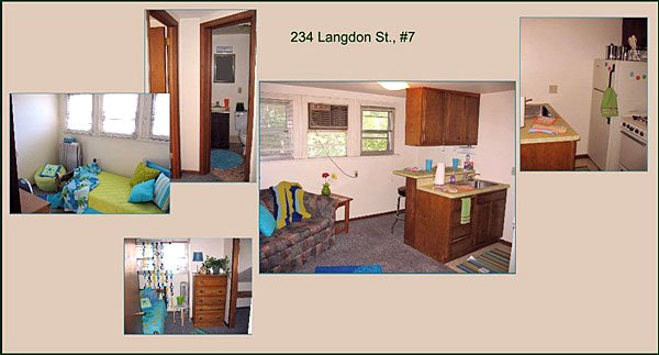 1 Bedroom 1 Bathroom House for rent at 234 Langdon St in Madison, WI