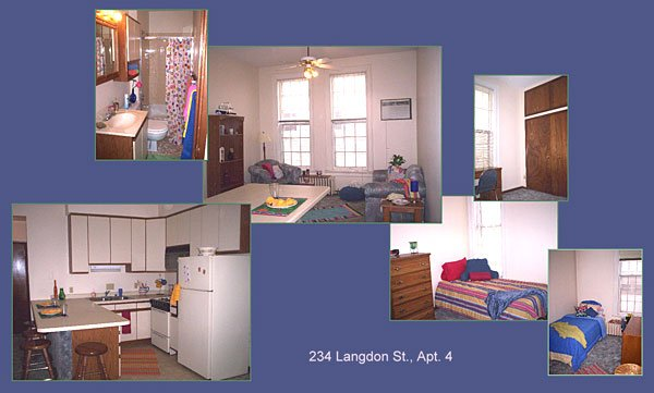 2 Bedrooms 1 Bathroom House for rent at 234 Langdon St in Madison, WI