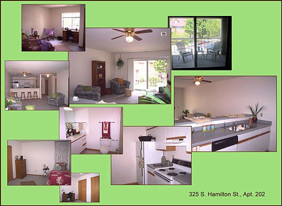 1 Bedroom 1 Bathroom Apartment for rent at 325 S Hamilton St in Madison, WI