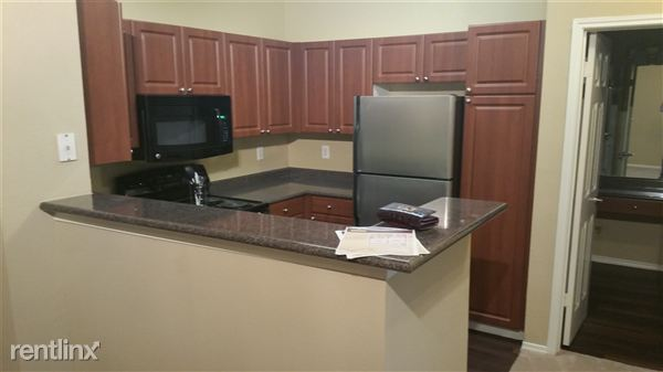 1 Bedroom 1 Bathroom Apartment for rent at 1300 S Congress Ave in Austin, TX