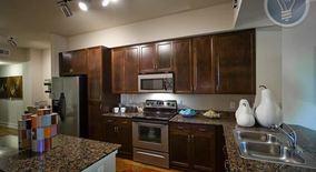 Similar Apartment at 43 Rainey St