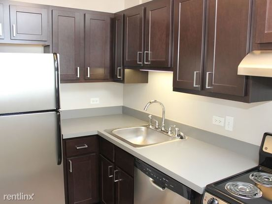 Studio 1 Bathroom Apartment for rent at 320 West Illinois Street in Chicago, IL