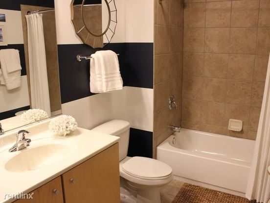 Studio 1 Bathroom Apartment for rent at 221 North Columbus Drive in Chicago, IL