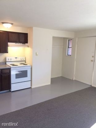 1 Bedroom 1 Bathroom Apartment for rent at 1340 N Ogden St in Denver, CO