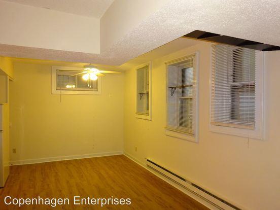 Studio 1 Bathroom Apartment for rent at 22 Oak Grove Street in Minneapolis, MN