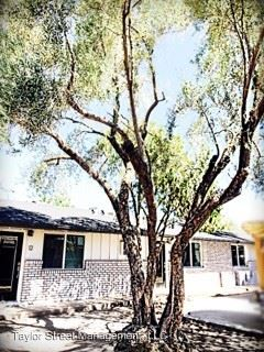 1 Bedroom 1 Bathroom Apartment for rent at 3011 N. 38th St. in Phoenix, AZ