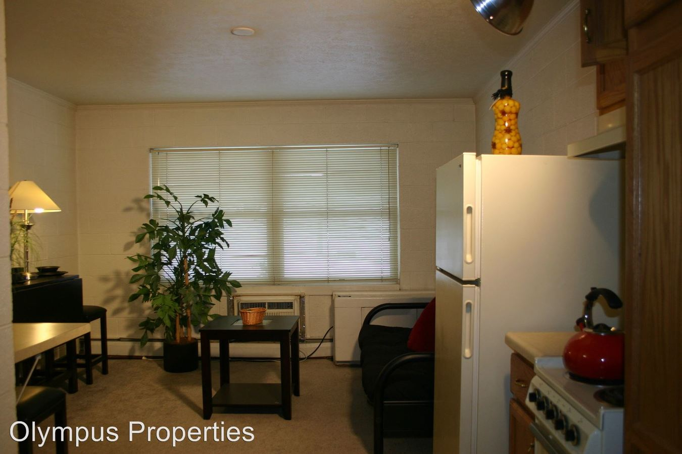 1 Bedroom 1 Bathroom Apartment for rent at Park North Apartments in Bloomington, IN
