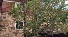 Similar Apartment at 3303 Molly Lane