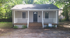 508 Peabody Alley Apartment for rent in Wilmington, NC