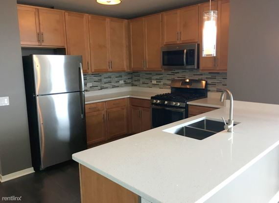 3 Bedrooms 2 Bathrooms Apartment for rent at 365 N Jefferson St in Chicago, IL