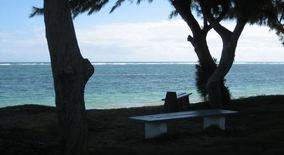 53 549 Kamehameha Hwy