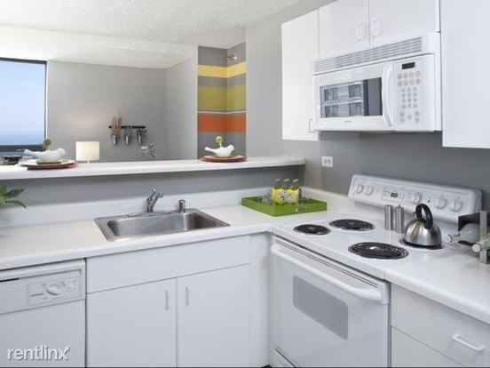 1 Bedroom 1 Bathroom Apartment for rent at 445 E Ohio St in Chicago, IL