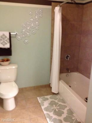 Studio 1 Bathroom Apartment for rent at 225 N Columbus Dr in Chicago, IL