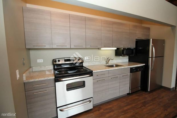 1 Bedroom 1 Bathroom Apartment for rent at 925 W Huron St in Chicago, IL