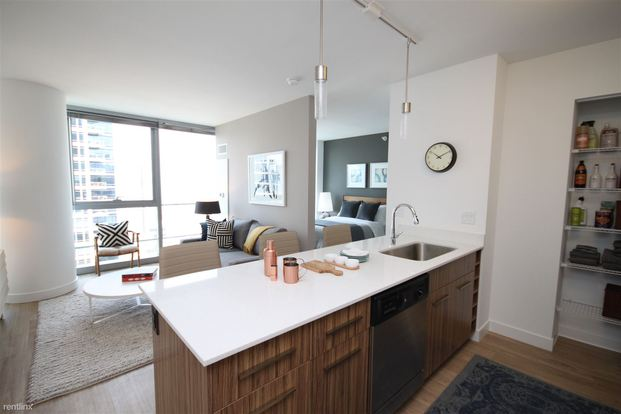 Studio 1 Bathroom Apartment for rent at 343 W Wolf Point Plz in Chicago, IL