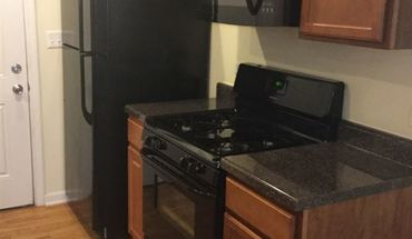 Albany Park Apartment for rent in Chicago, IL