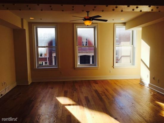 1 Bedroom 1 Bathroom House for rent at 117 Chestnut St in Philadelphia, PA