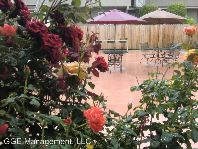 1 Bedroom 1 Bathroom Apartment for rent at 26100 Narbonne Avenue in Lomita, CA