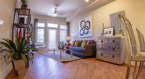 Similar Apartment at Broken Lease Ok With Up To One Month Free