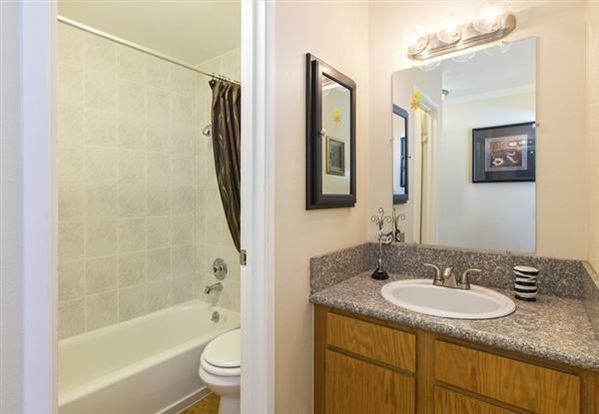 1 Bedroom 1 Bathroom Apartment for rent at The Atrii in Denver, CO