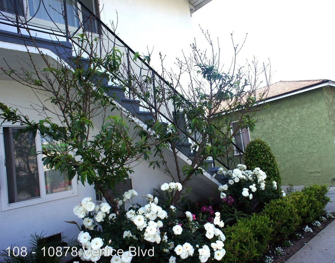 1 Bedroom 1 Bathroom Apartment for rent at 10878 Venice Blvd. / 3801 Girard Ave. in Culver City, CA