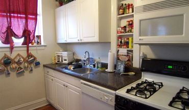 3643-45 N Greenview Ave Apartment for rent in Chicago, IL