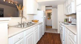 Similar Apartment at Dakota Ridge Apartments