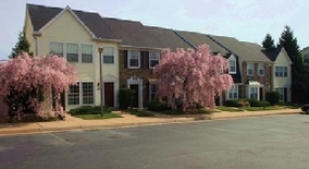 Orchard Glen Apartments Washington Dc