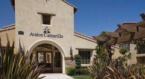 Avalon Camarillo Apartment for rent in Camarillo, CA