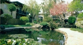Park Orchard Apartments Santa Clara