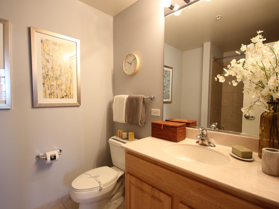 1 Bedroom 1 Bathroom Apartment for rent at 353 North Desplaines Street in Chicago, IL
