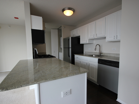 1 Bedroom 1 Bathroom Apartment for rent at 180 North Jefferson Street in Chicago, IL