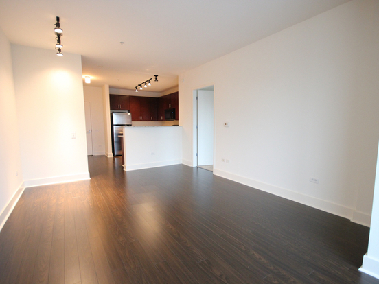 1 Bedroom 1 Bathroom Apartment for rent at 900 South Clark Street in Chicago, IL