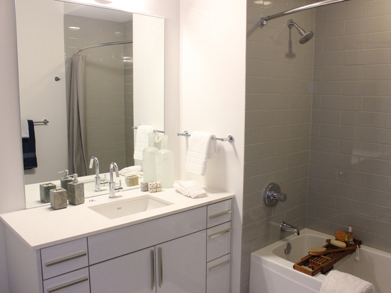 2 Bedrooms 1 Bathroom Apartment for rent at 220 West Illinois Street in Chicago, IL