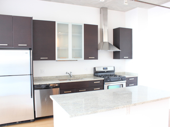 1 Bedroom 1 Bathroom Apartment for rent at 1135 South Delano Court in Chicago, IL