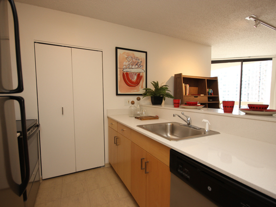Studio 1 Bathroom Apartment for rent at 750 North Dearborn Street in Chicago, IL