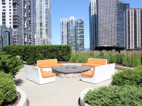 1 Bedroom 1 Bathroom Apartment for rent at 221 North Columbus Drive in Chicago, IL