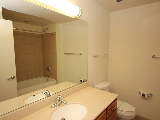 1 Bedroom 1 Bathroom Apartment for rent at 555 West Kinzie Street in Chicago, IL
