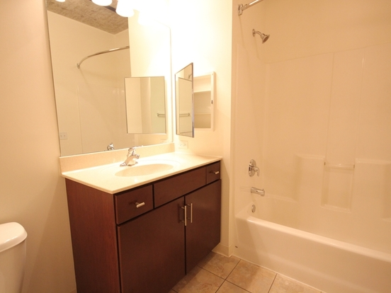 3 Bedrooms 2 Bathrooms Apartment for rent at 900 South Clark Street in Chicago, IL