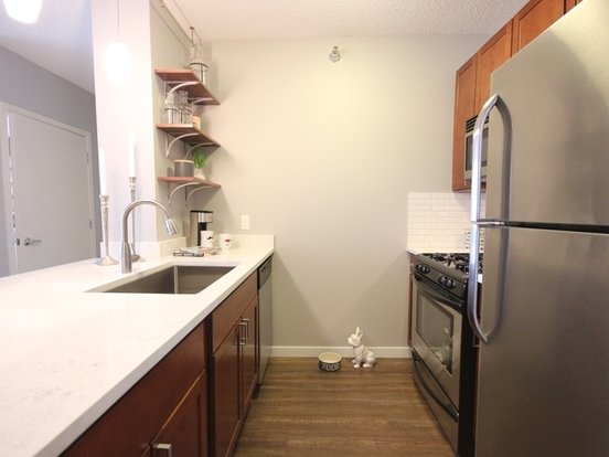 1 Bedroom 1 Bathroom Apartment for rent at 355 East Ohio Street in Chicago, IL