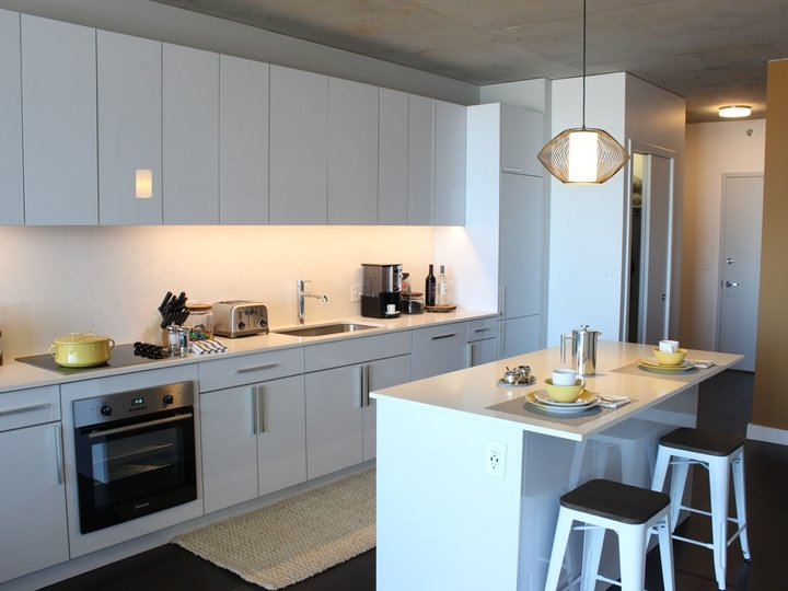 1 Bedroom 1 Bathroom Apartment for rent at The Jones in Chicago, IL