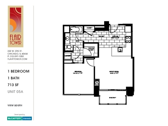1 Bedroom 1 Bathroom Apartment for rent at 222 West Erie Street in Chicago, IL